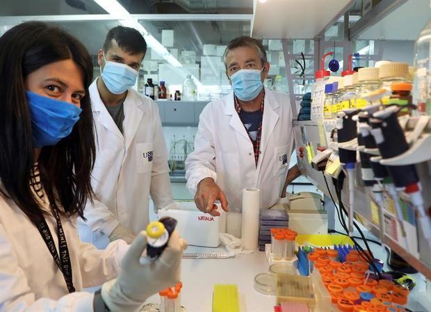 Una proteína del SARS-CoV-2 tiene un papel en debilitar la respuesta inmune