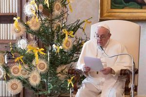 Imagen facilitada por el Vaticano del papa Francisco este miércoles durante la Audiencia semanal.