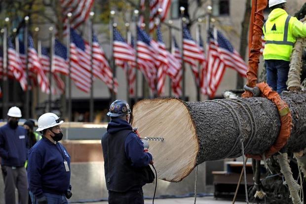 Llega a Nueva York el tradicional Árbol navideño del Rockefeller Center