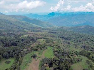Vista aérea de archivo de una zona boscosa en la localidad de Minatitlán, en el estado de Colima, México.