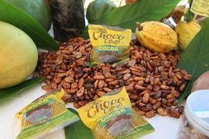 Incremento de la producción y comercialización de 3600 quintales de cacao anualmente.