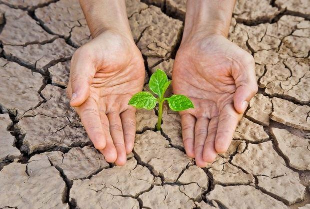 Educar para luchar contra el cambio climático