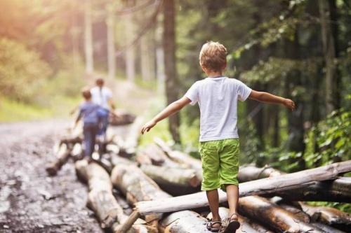 Los campamentos de verano con el medio ambiente