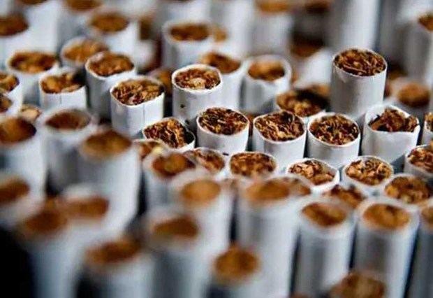 Autoridades incautan cargamento de más de 500 mil unidades de cigarrillos ilegales.
