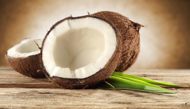 La siembra y sostenibilidad del cultivo de cocos en el país es esencial para preservar al sector turístico.