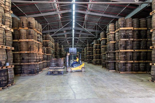 Los productores de ron dominicano piden equidad al concebir la reforma tributaria.