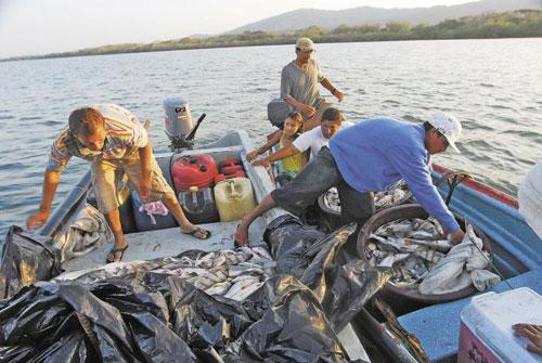 Sector pesquero de Nicaragua proyecta un incremento de 1,72% en exportaciones