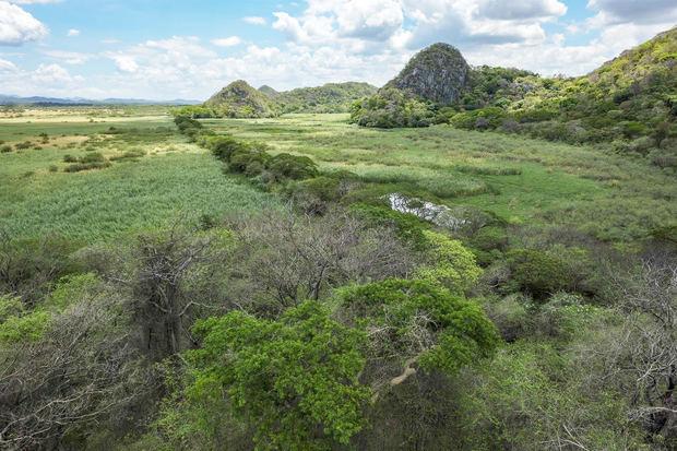 Fotografía que muestra el Parque Nacional Palo Verde, en Costa Rica.