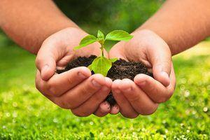 El desarrollo sostenible centrará la IV Asamblea de Medioambiente de la ONU