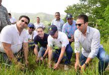 Jornada de reforestación.