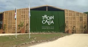 Tropicalia.