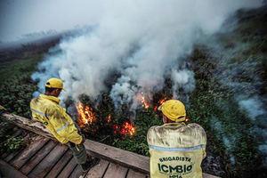Bomberos observan el fuego en la localidad de Porto Jofre, localizado en el municipio de Poconé, estado de Mato Grosso, Brasil.