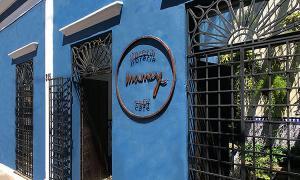 Galería Mamey