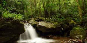 El Foro Mundial del Agua llega a la mayor reserva de ese recurso en el mundo