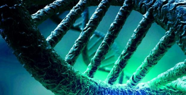 Logran el primer genoma íntegro de un habitante primitivo del Caribe