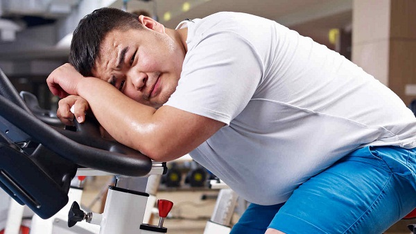 P38 alfa: el interruptor para controlar la obesidad y la diabetes