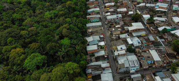 Un ambicioso plan intentará frenar la pérdida de la biodiversidad