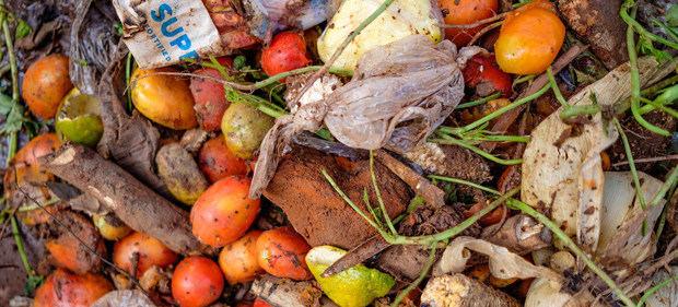 El mundo desperdicia el 17% de los alimentos que produce mientras 811 millones de personas sufren hambre