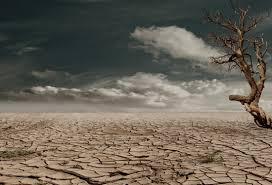 La crisis climática se agrava: los niveles de CO2 en la atmósfera alcanzan un nuevo récord