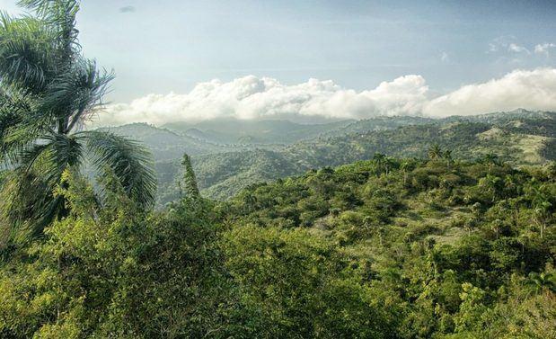 R.Dominicana y Haití firman declaración conjunta para proteger medioambiente.