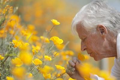 Por qué la nariz quizá sea la clave del riesgo de Parkinson