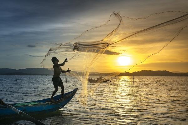 RD y la FAO trabajan en acciones contra la pesca ilegal