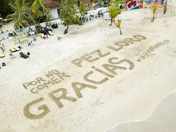 Artistas usaron las playas como lienzos en defensa del Pez Loro