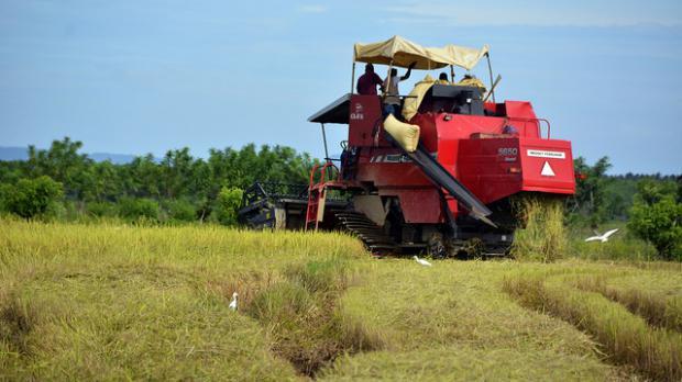 Crean Registro Único de Productores Agropecuarios