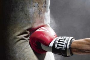 La selección nacional de boxeo que logró once plazas para los XVIII Juegos Deportivos Panamericanos.