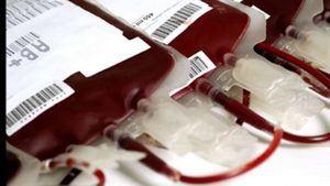 El Poder Ejecutivo crea la Red Nacional de Servicios de Sangre.