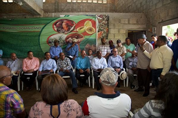 Gobierno apoyará siembra de café, aguacate y mango en Pedernales