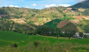 Valle Nuevo, Constanza.