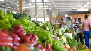 Anuncian mejoras en mercados de la capital como apoyo a los agricultores.