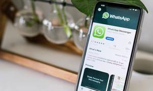 WhatsApp aumenta de cuatro a ocho el límite de participantes en videollamadas.
